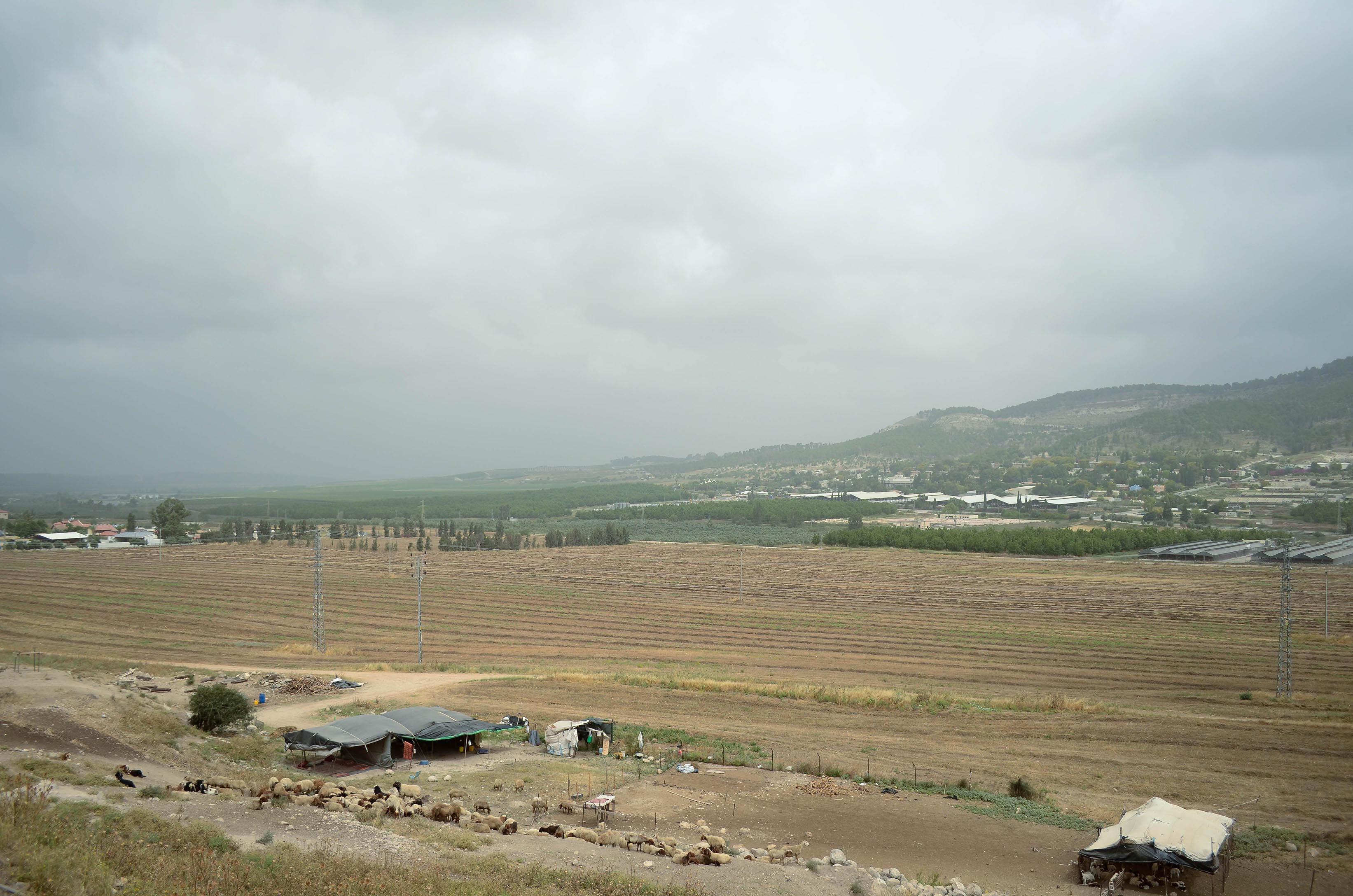 At Beth Shemesh Ark: Glimpses Of Israel