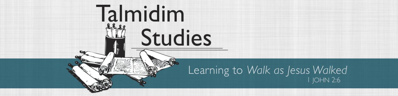 Talmidim Studies